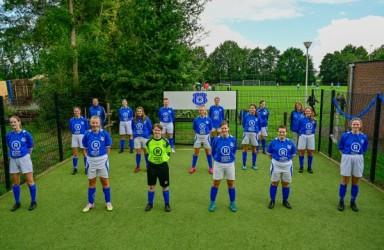 Blauw Wit A / MO19-1
